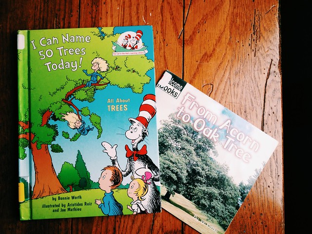Kids' Books for Learning About Trees