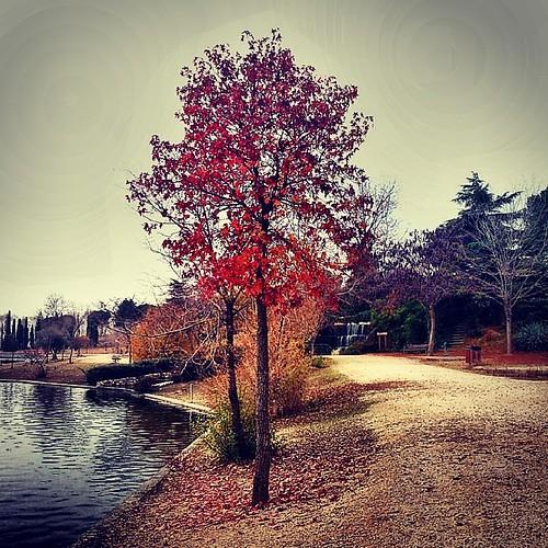 final del otoño