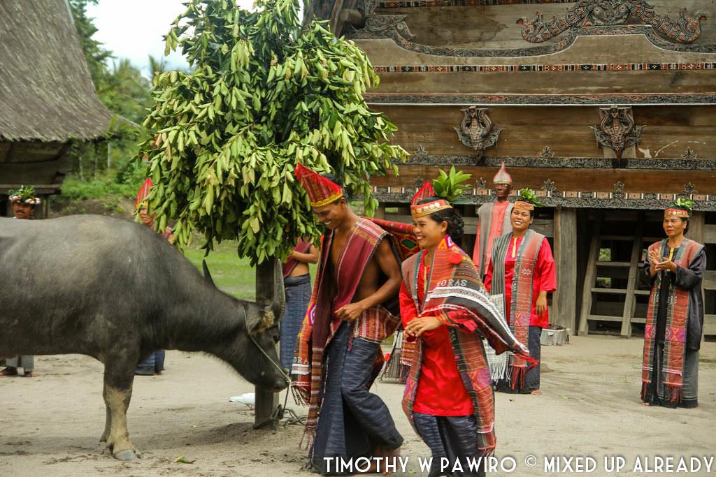 Indonesia - Medan - Museum Huta Bolon Simanindo - Mangalahat Horbo - Gondang Sidoli (1)
