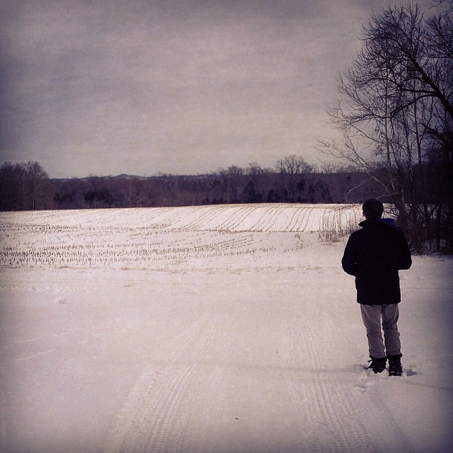I love the cornfields in the snow.