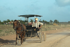 amish(0.0), ranch(0.0), cattle(0.0), agriculture(1.0), farm(1.0), vehicle(1.0), pack animal(1.0), horse and buggy(1.0), landscape(1.0), rural area(1.0), cart(1.0),
