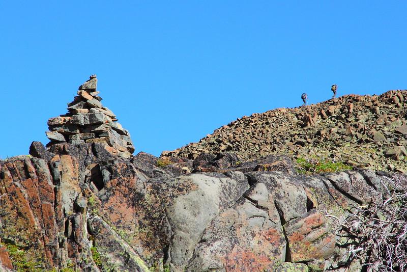 IMG_3776 Piegan Pass Trail