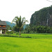Lembah Harau by anwarsiak***sibuk***