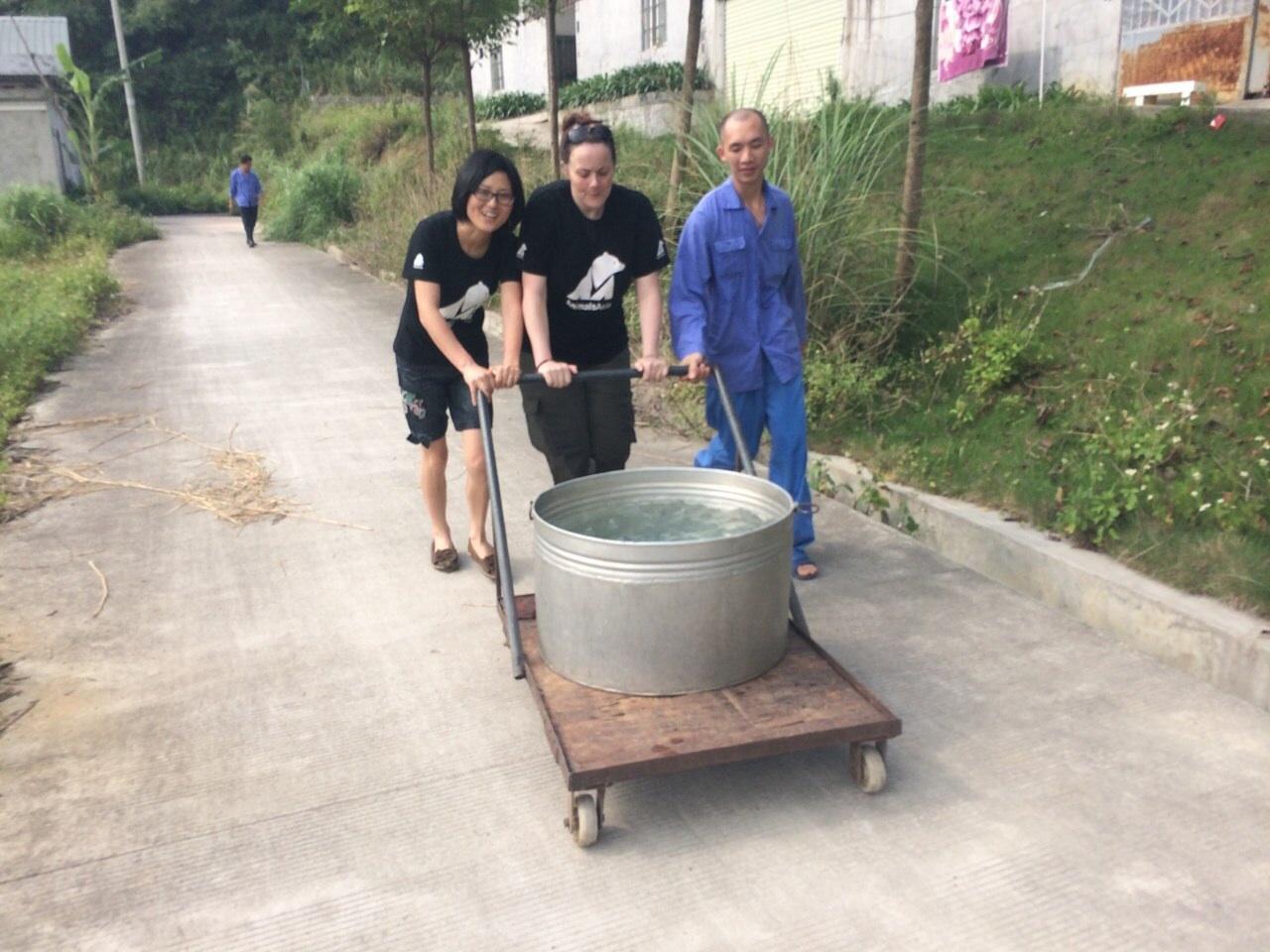 Lu Wen Juan working