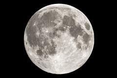 The Clark Kent Moon of June