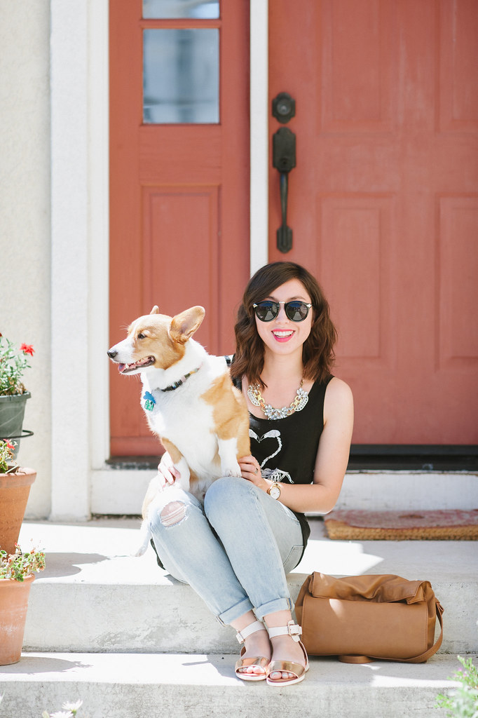 corgi, sf blogger, readytwowear, fashion blog, schutz shoes, gap jeans