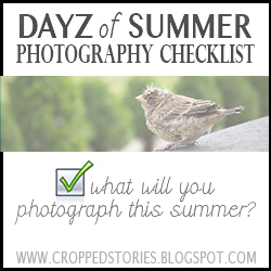 DAYS OF SUMMER PHOTOGRAPHY CHECKLIST BUTTON
