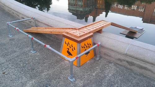 Duck ladder!!! by christopher575