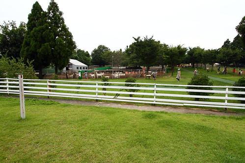 大山動物牧場