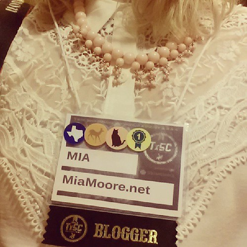 Little #txsc13 details - love this new @lulus necklace I won last night (thanks!) and the details on this blouse. The icons on my badge mean: I'm from Texas, oh deer I'm shy, I'm a cat lover, and this is my first TX Style Council!