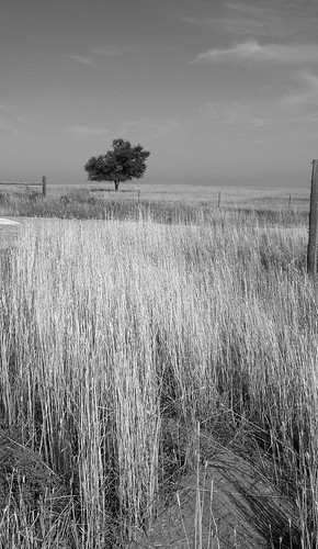 road morning monochrome drive colorado scenic historical plains pawnee flickrandroidapp:filter=none