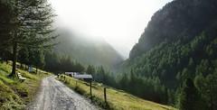 dal rifugio V Alpini a Bormio (Parco Nazionale dello Sltevio)