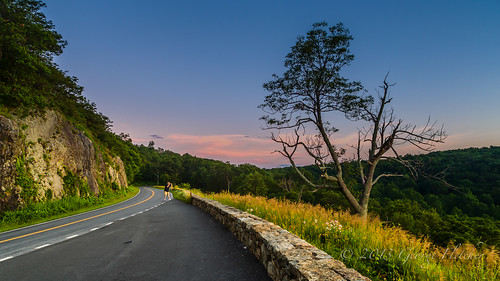 road trees mountains wall sunrise virginia unitedstates huntly shenandoahnationalpark indianrunoverlook