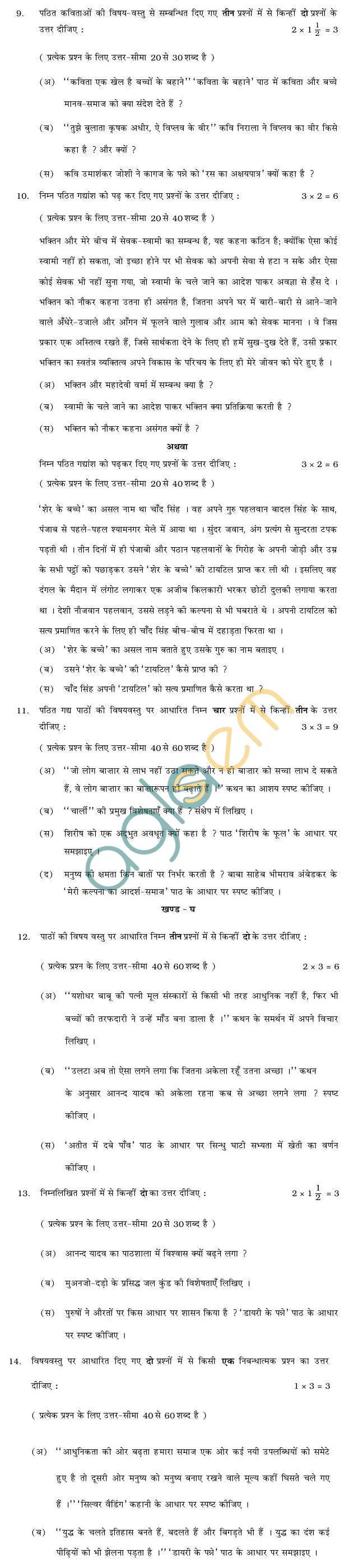 Rajasthan Board V Upadhyay Hindi (C) Question Paper 2013