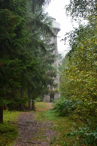 Hinter hohen Bäumen lugt ein Turm hervor