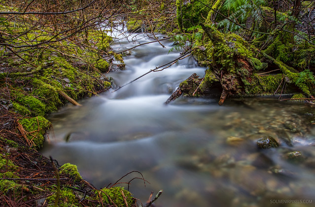 Wheeler >> Pemberton Stream | Flickr - Photo Sharing!