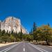 The Moonlit Road to El Capitan