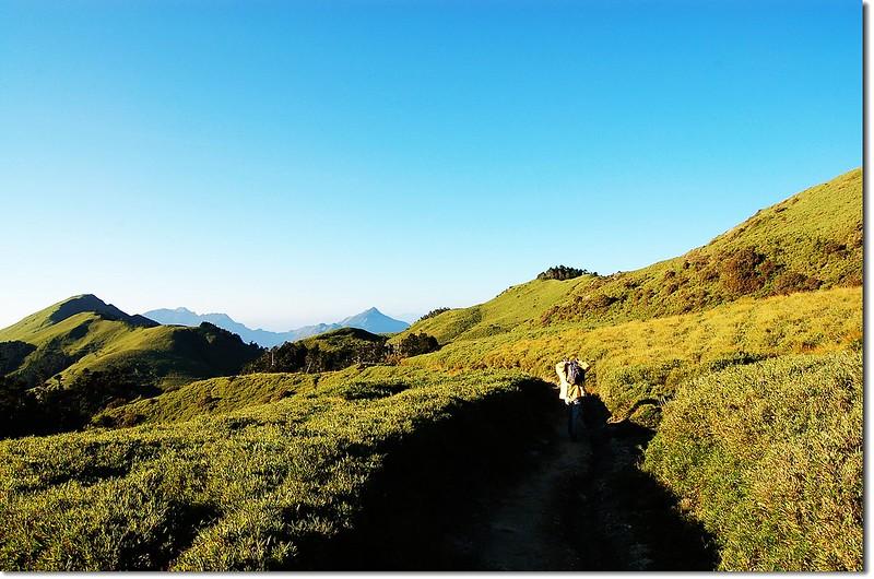 奇萊南峰登山步道 8
