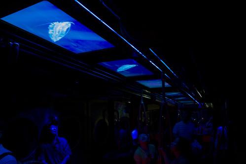 結果一走進列車就看到一排排的 LCD 舖滿車頂...