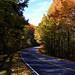 Talimena Drive Fall 2013