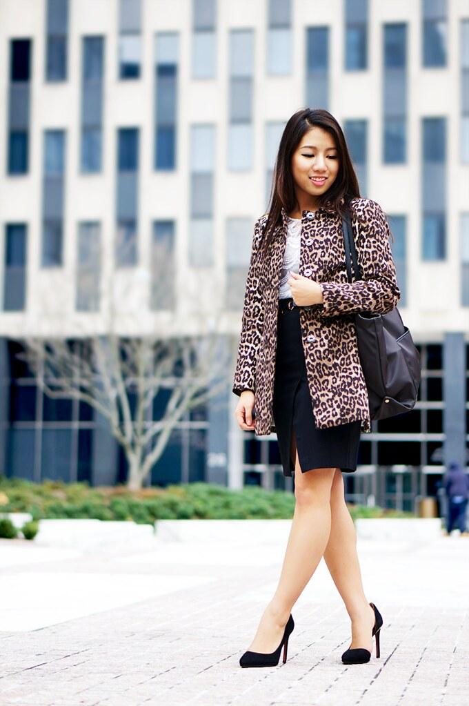 Petite Hues, Leopard Jacket, Split Hem Skirt, Lace Top,