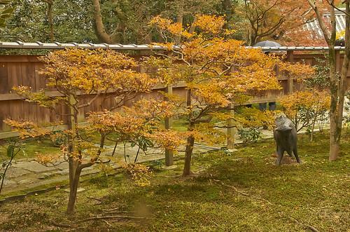 【写真】2013 紅葉 : 即宗院/2021-07-30/IMGP3443