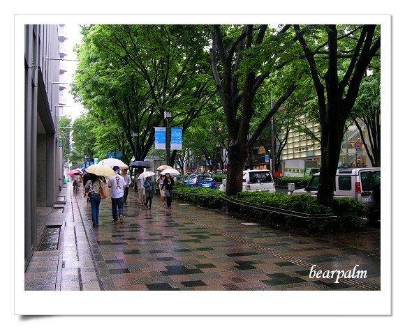 【東京橫濱Day2-2】東京:表參道.神宮外苑.新宿