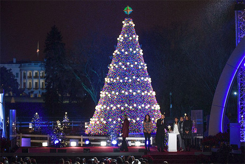 The National Christmas Tree, behind the White House. Click through for image source.
