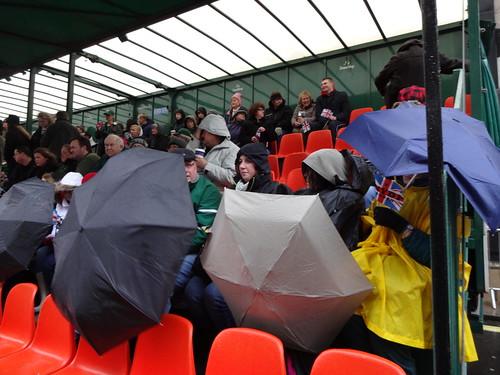 Parapluies width=