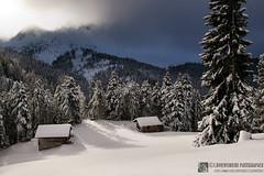 Inverno sulle Alpi