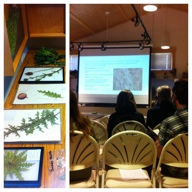 Noxious Weed Class