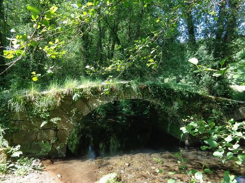 Ponte dos tres ollos. Río Sarela