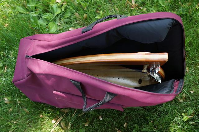 Harp in case