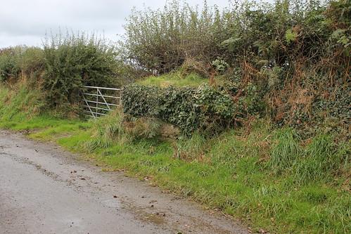 Stondin Laeth, Dolgoy Newydd, Pontgarreg