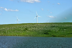 machine(0.0), field(0.0), mill(0.0), prairie(1.0), windmill(1.0), plain(1.0), wind(1.0), wind farm(1.0), wind turbine(1.0), grassland(1.0),