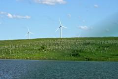 prairie, windmill, plain, wind, wind farm, wind turbine, grassland,