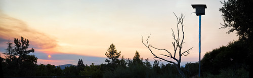 california park summer color birds sunrise fire nikon sanramon empty large birdhouse panoramic september burn eastbay forestfire d200 mtdiablo northern stitched slope evacuated 2013 morganhillfire