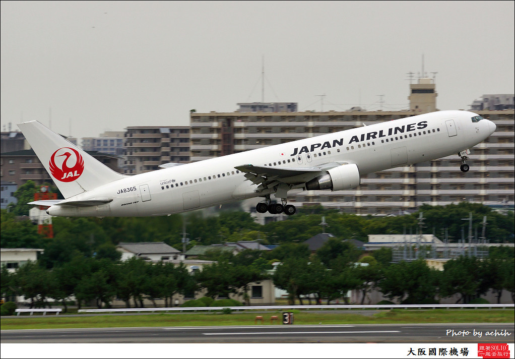 Japan Airlines - JAL JA8365-002