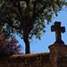 Small photo of Dordogne