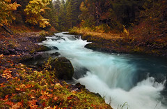 White Salmon Autumn