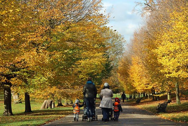Walking in Greenwich Park