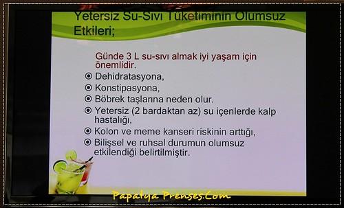 Dimes 046