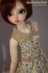 mori dress+ bear hairband by harajukudoll