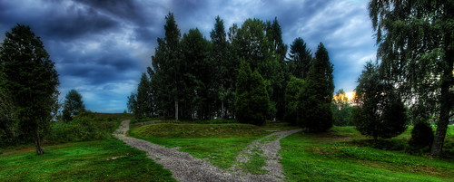 morning blue trees summer sky tree green nature grass clouds sunrise landscape outdoors early view sweden outdoor path sony 8 golfcourse bluehour hdr a77 östergötlandcounty 1650f2
