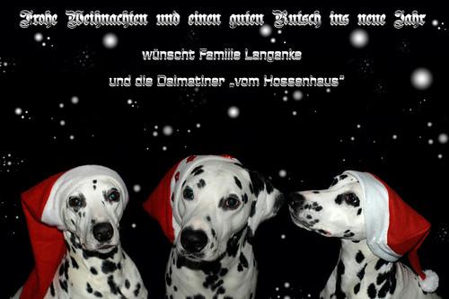 Frohe Weihnachten! by Dalmatiner vom Hossenhaus