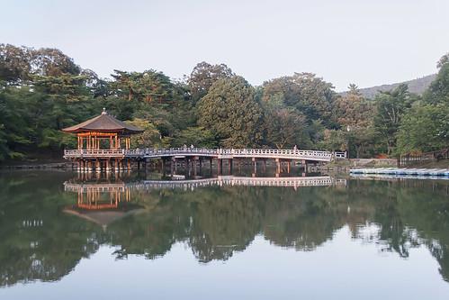 Sagi Ike reflections