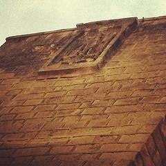 نسر صلاح الدين في القلعة