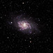 M33 The Triangulum Galaxy by Craig.Taylor