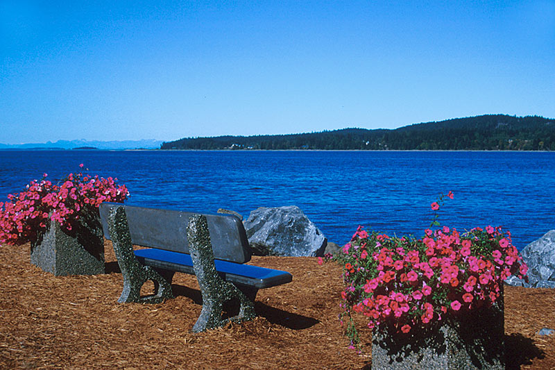 View across Baynes Sound of Denman Island, Gulf Islands, Georgia Strait, British Columbia, Canada