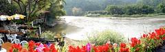 Thaton River View Resort - Chiang Mai